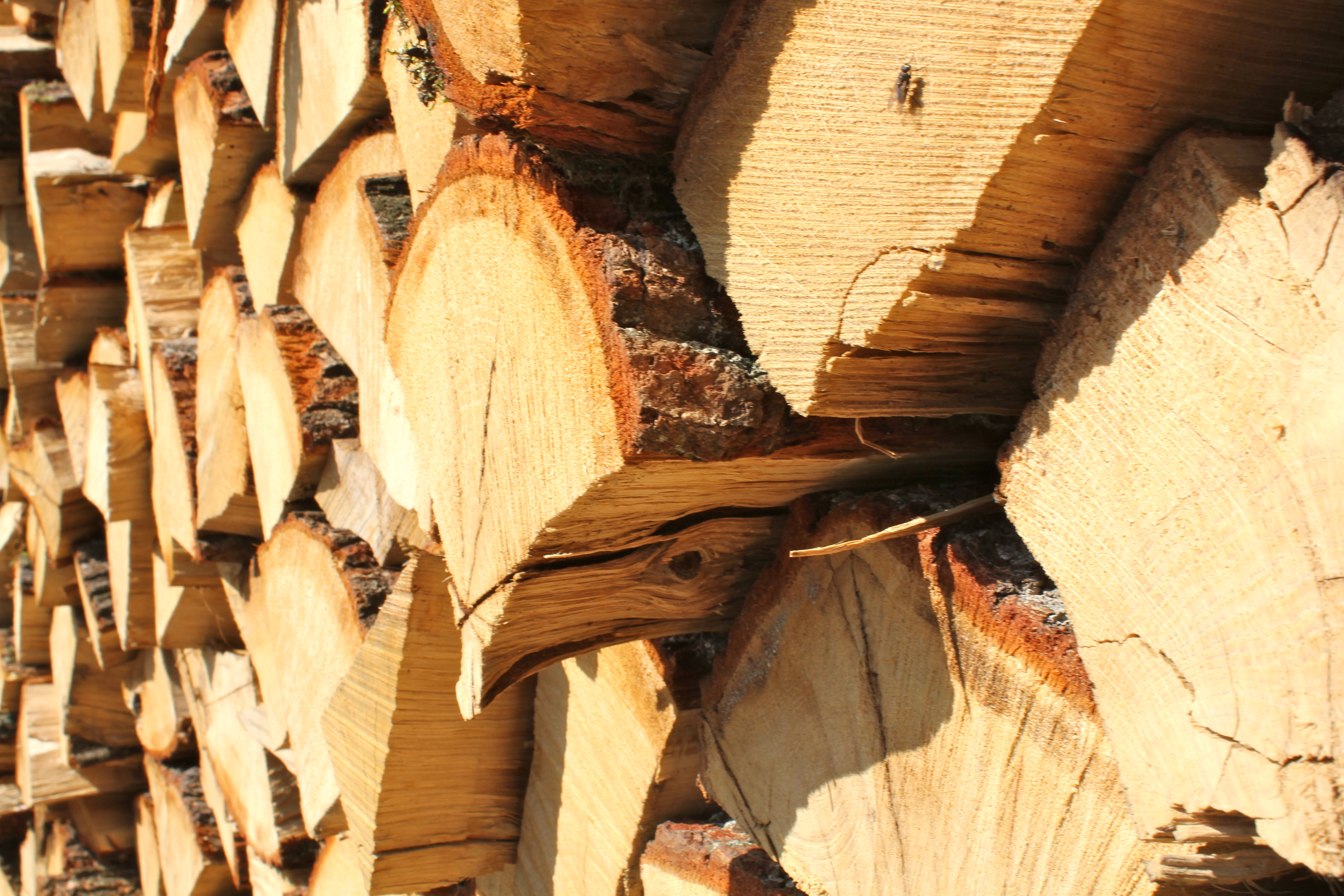 Holzwärme